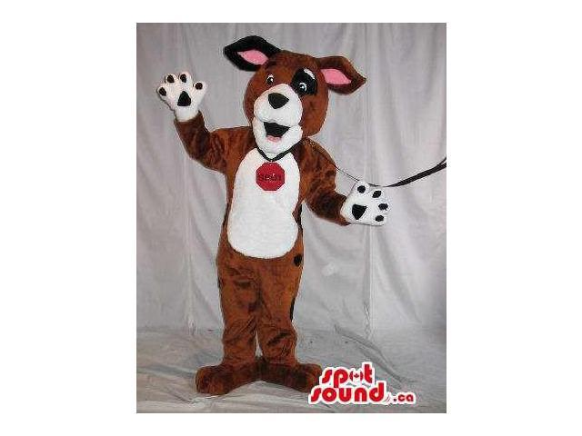 Brown And White Dog Plush Canadian SpotSound Mascot With A Collar And Leash