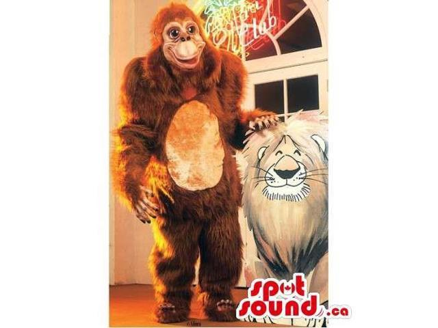 Brown Chimpanzee Or Orangutan Canadian SpotSound Mascot With A Beige Belly