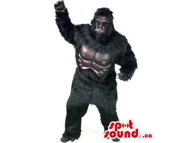 Strong Black Gorilla King-Kong Character Animal Canadian SpotSound Mascot