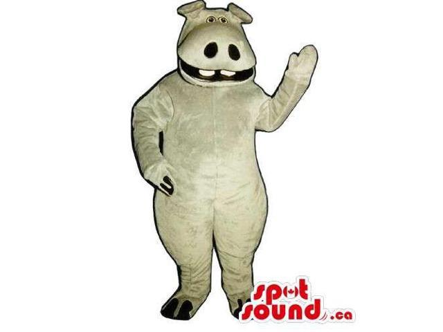 All Grey Hippopotamus Animal Canadian SpotSound Mascot With Large Nostrils And Teeth
