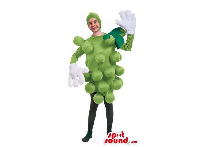 Cool Green Grape Cluster Fruit Adult Size Costume Or Canadian SpotSound Mascot