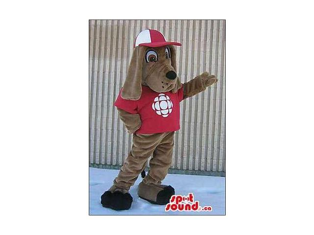 Brown Dog Dressed In A Red Cap And T-Shirt With A Logo