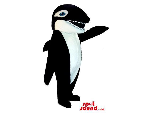 Customised Orca Whale Plush Canadian SpotSound Mascot With Blue Eyes