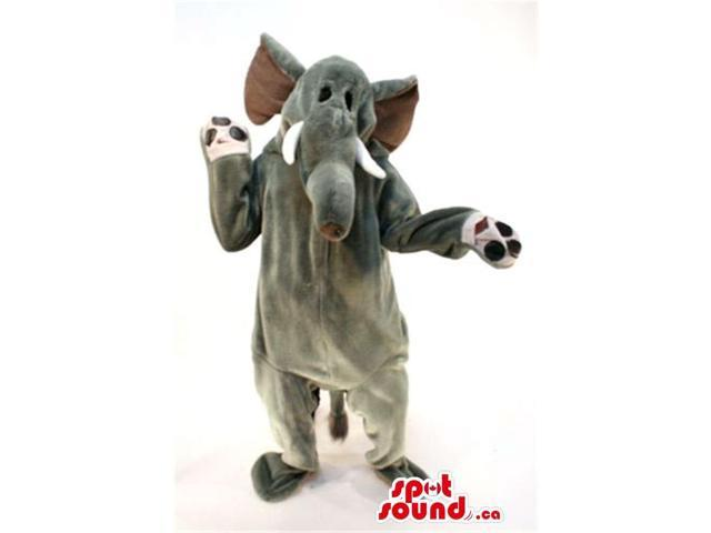 Customised All Grey Elephant Canadian SpotSound Mascot With Small Black Eyes