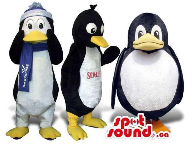 Three Penguin Plush Canadian SpotSound Mascots In Various Sizes And Clothes