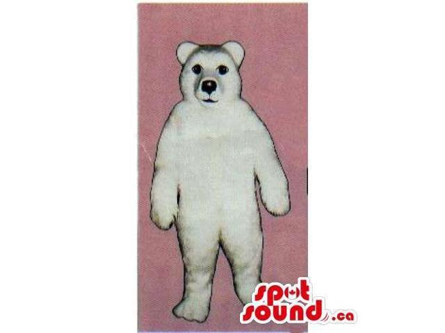 Customised All White Polar Plush Bear Forest Canadian SpotSound Mascot