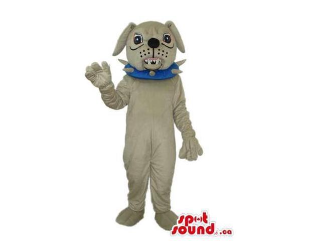Angry Grey Bulldog Canadian SpotSound Mascot Dressed In A Blue Studded Collar