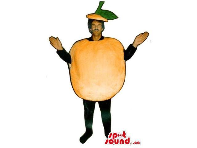 Customised Orange Fruit Adult Size Costume Or Canadian SpotSound Mascot