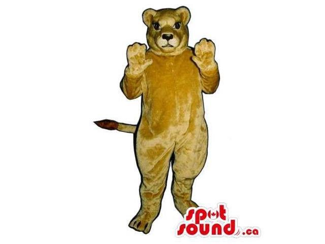 Customised And All Brown Wildcat Animal Canadian SpotSound Mascot