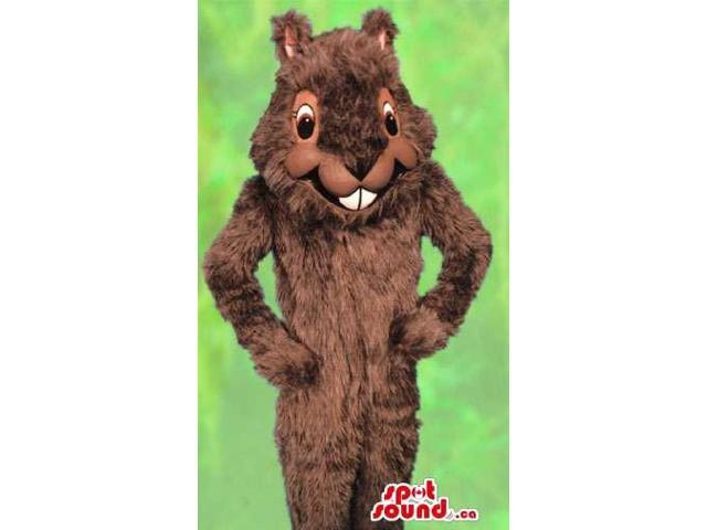 Customised Brown Squirrel Forest Park Animal Canadian SpotSound Mascot