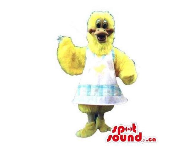 Yellow Chicken Or Hen Canadian SpotSound Mascot Dressed In A White Apron