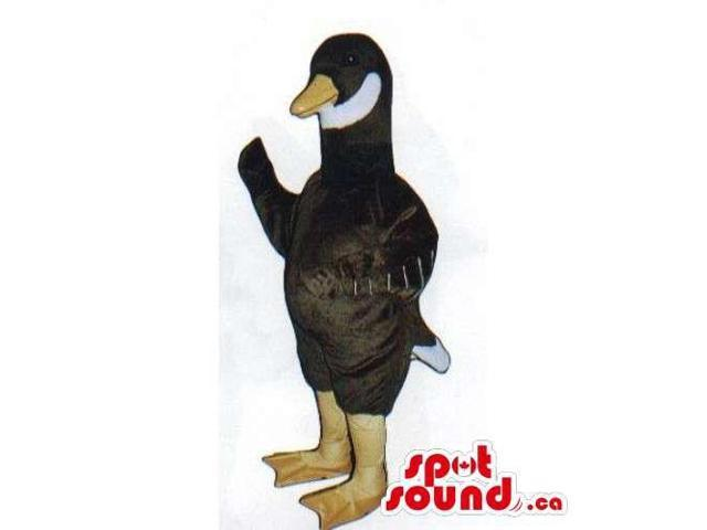 Black Customised Duck Farm Bird Canadian SpotSound Mascot With White Stripe