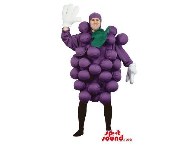 Cool Purple Grape Cluster Fruit Adult Size Costume