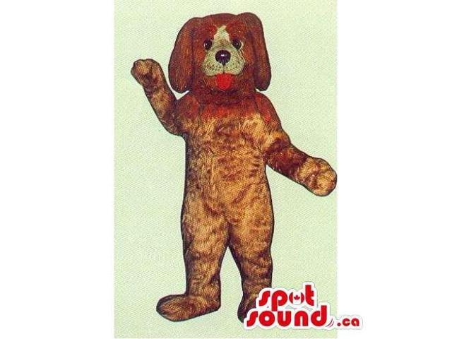 All Customised Brown Dog Canadian SpotSound Mascot With Tongue And White Face