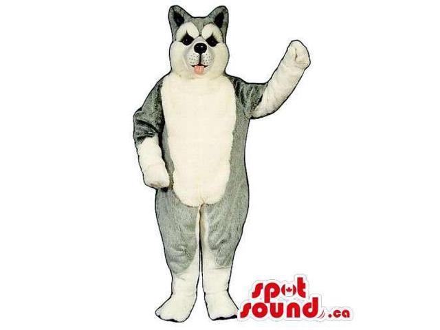 Customised Grey And White Husky Breed Dog Canadian SpotSound Mascot