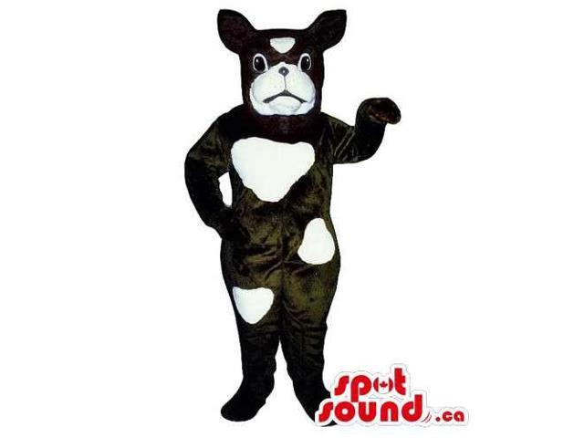 Customised Black Dog Pet Canadian SpotSound Mascot With White Spots