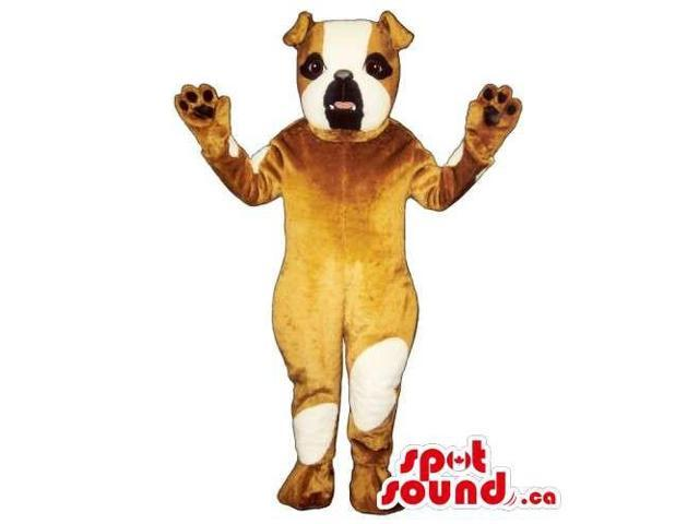 Customised Brown Bulldog Canadian SpotSound Mascot With White Spots