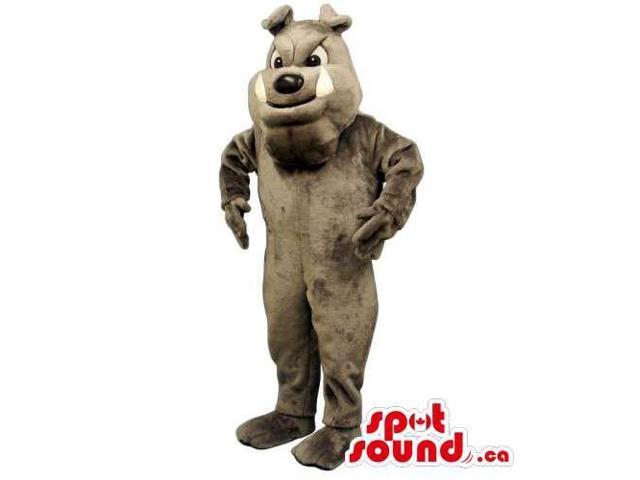 Customised Grey Dog Pet Canadian SpotSound Mascot With Visible White Fangs