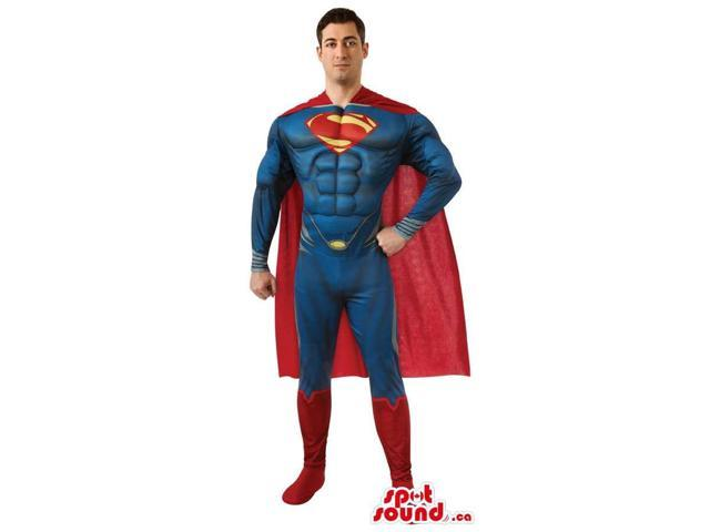 Strong Superman Cartoon Character Adult Size Costume