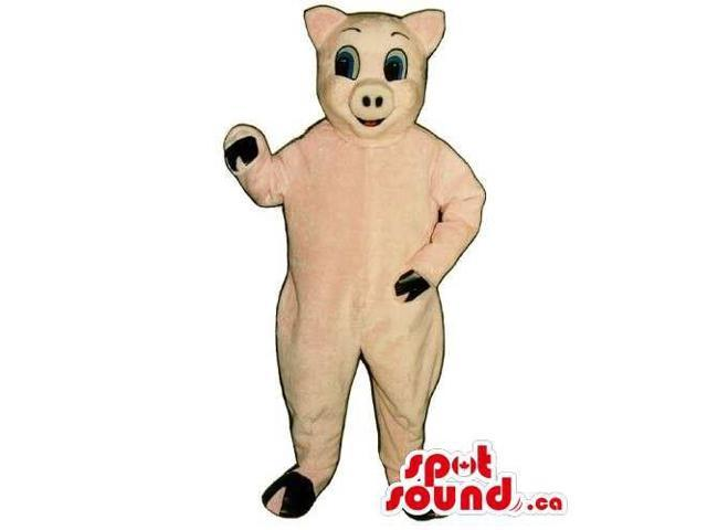 Customised All Pig Animal Canadian SpotSound Mascot With Space For Logos