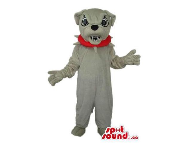 Angry Grey Bulldog Canadian SpotSound Mascot Dressed In A Red Studded Collar