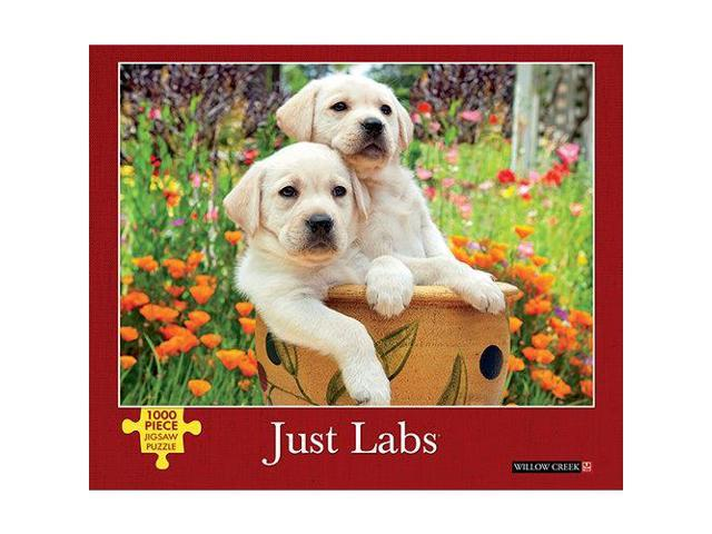 Just Labs 1000 Piece Puzzle by Willow Creek Press