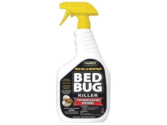 Insect+Exterminator+Near+Me