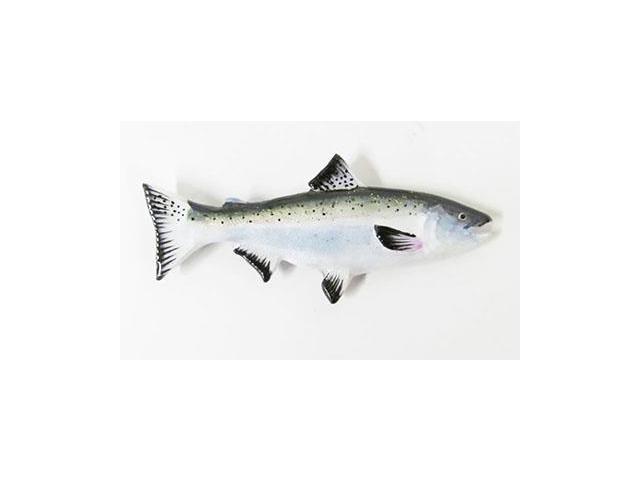 pin adult ocean salmon - photo #16