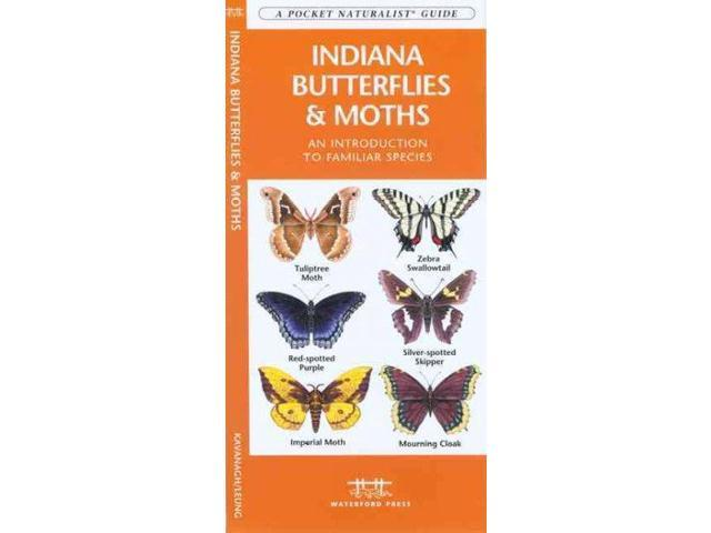 Indiana Butterflies & Moths Pocket Naturalist Guide LAM Kavanaugh, James