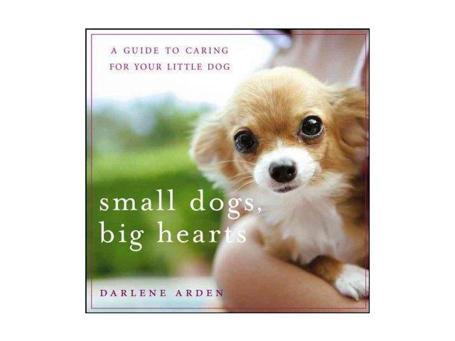 Small Dogs, Big Hearts Revised Arden, Darlene