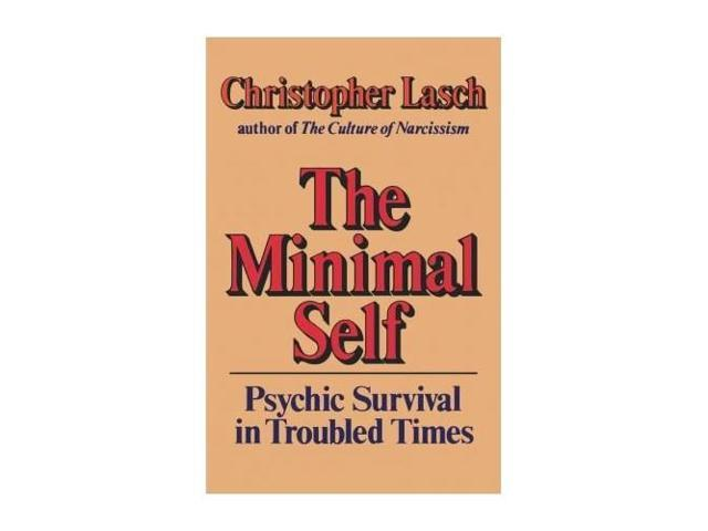 The Minimal Self: Psychic Survival in Troubled Times (Picador Books)