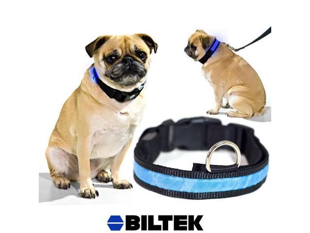 Blue LED Light Dog Collar - X-Large - Dog Pet Night Safety Fashionable Flashing Light Up Collar Nylon Large Adjustable