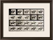 """Jockey on a Galloping Horse, Plate 627 from """"Animal Locomotion,"""" 1887 is a Framed Giclee Print set with a RAMINO II Espresso wood frame and enhanced with a Soft White mat.,br><br>This exceptional art"""