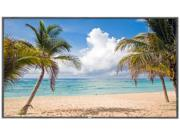 "NEC E805 80"" LED Backlit 1080p FHD Commercial-Grade Large Format Display"
