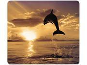 Fellowes Recycled Optical Mouse Pad - Dolphin Jumping