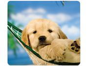 Recycled Mouse Pad, Nonskid Base, 7-1/2 X 9, Puppy In Hammock