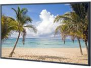 "NEC V801 80"" High-Performance LED Edge-lit Commercial-Grade Display w/ Integrated Speakers"