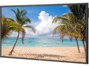 "NEC P463 46"" LED Backlit Professional-Grade Large Screen Display"
