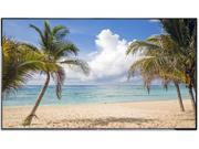 "NEC E425 42"" LED Backlit Commercial-Grade Large Format Display with Integrated TV Tuner"