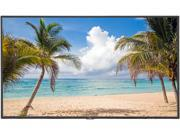 Click here for Large Format Monitor prices