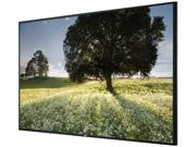 """LG 47WS50BS 47"""" Large Format Monitor, IPS Panel"""