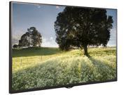 """LG Electronics 43"""""""" LED TV (43SE3B-B)"""" N82E16824025551"""