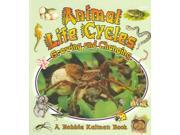 Animal Life Cycles Nature's Changes 1