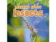 Learning About Insects The Natural World