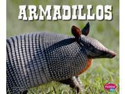 Armadillos North American Animals 9SIAA9C3WP1944
