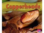 Copperheads Pebble Plus 9SIA9UT3YD1697