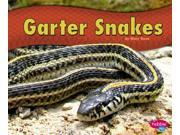 Garter Snakes Pebble Plus 9SIA9UT3YM6724