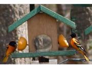 Looker Oriole Oriole Buffet Bird Feeder (9SIA00Y08X7716 Looker Products) photo
