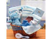 Gift basket 890573-B Simply The Baby Basics New Baby Gift Basket- Blue