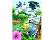Outset Media Games OM58809 North American Birds Tray Puzzle, 35 pcs